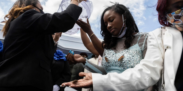 Butterflies released at MaKahia funeral - NYT